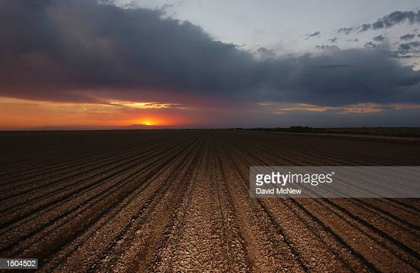 The sun sets on a plowed field that will need Colorado River water to yield a crop October 17, 2002 near El Centro, California. Southern California...