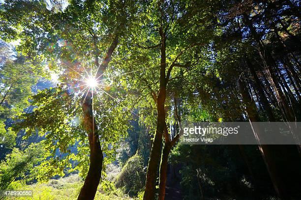 The sun shines at Cerro Caracol in Concepcion host city of 2015 Copa America Chile on June 29 2015 in Concepcion Chile