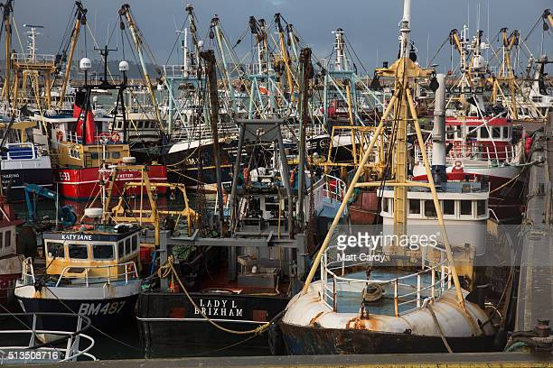 The sun shines on some of the fishing vessels moored in Brixham harbour on March 2 2016 in Devon England The UK's fishing industry is likely to be...