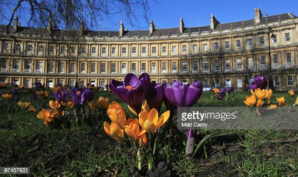 The sun shines on spring flowers that have bloomed in front of the Circus on March 5 2010 in Bath England The UK was finally enjoying a period of...