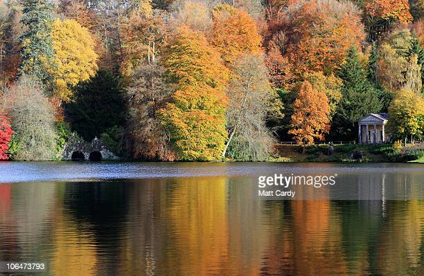 The sun shines on trees that are displaying their autumn colours beside the lakeside Temple of Flora at the National Trust's Stourhead on November 3...