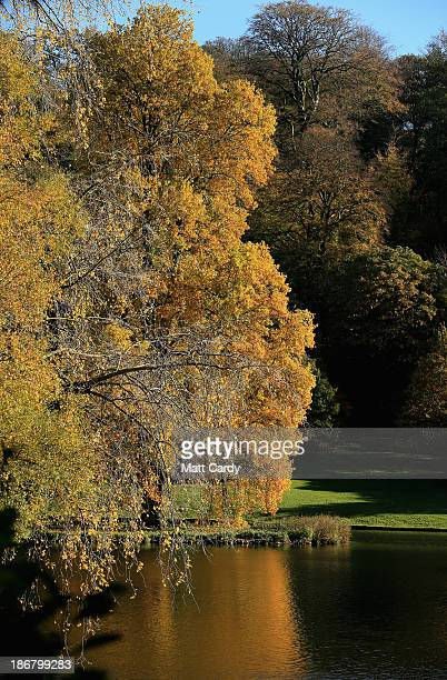 The sun shines on trees that are displaying their autumn colours surrounding the lakeside at the National Trust's Stourhead on November 4 2013 in...
