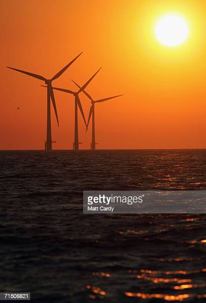 The sun starts to rise behind Britain's largest offshore wind farm off the Great Yarmouth coastline on July 19 2006 in Norfolk England The 30...