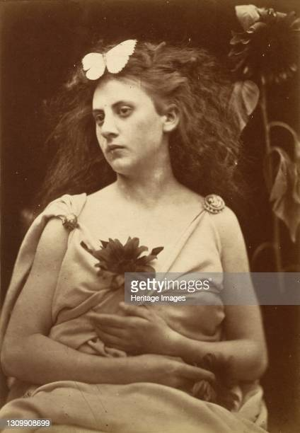 The Sunflower, early 1870s. Artist Julia Margaret Cameron. .
