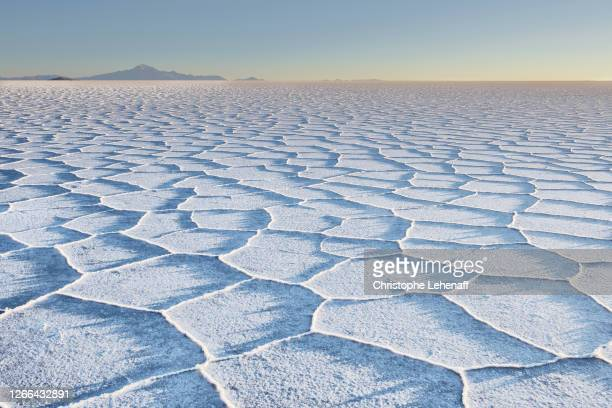 the sunrise from salar de uyuni, bolivia. - altiplano stock pictures, royalty-free photos & images