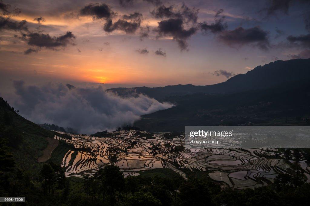 The sunrise of terraced fields : Stock-Foto