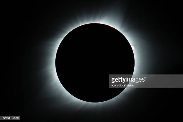 The sun's corona as seen during the total solar eclipse on August 21 in St Louis MO