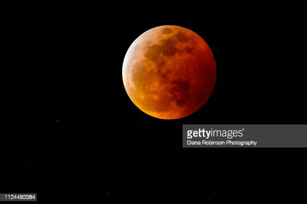 the super blood wolf moon and total lunar eclipse on january 20-21, 2019, near punta gorda, florida - supermoon stock pictures, royalty-free photos & images
