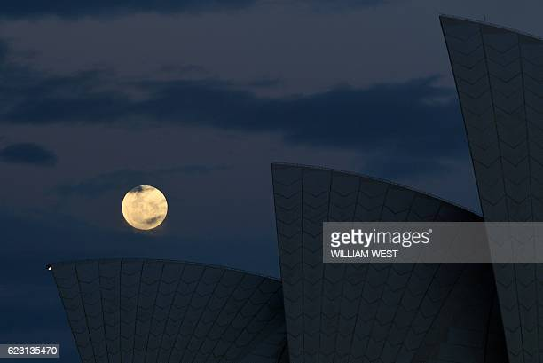 The 'supermoon' rises over the sails of the Sydney Opera House on November 14 2016 Skygazers headed to highrise buildings ancient forts and beaches...