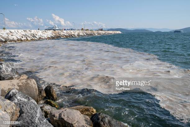 The surface of the Marmara Sea covered with sea snot seen in Istanbul, Turkey on June 1, 2021. Sea snot is a jelly-like substance formed by the...