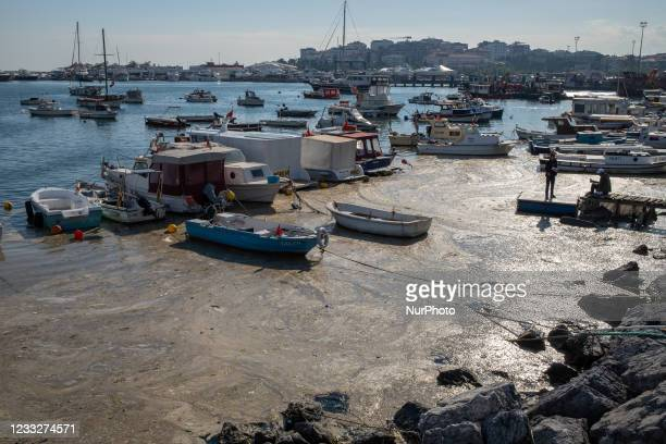The surface of the Marmara Sea covered with sea snot seen in Istanbul, Turkey on June 4, 2021. Sea snot is a jelly-like substance formed by the...
