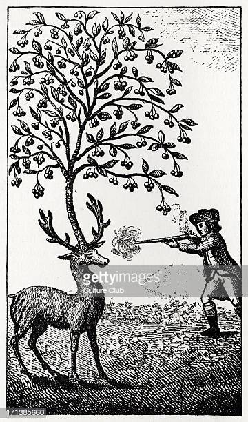 The Surprising Adventures of Baron Munchausen Original illustration captioned The Stag with the Cherry Tree The Baron shoots a stag with antlers made...