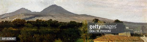 The surroundings of Vesuvius by Federico Rossano oil on canvas 25x83 cm Italy 19th century
