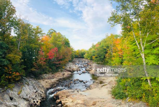 the swift river in rumford, maine usa during autumn 2019 - swift river stock photos and pictures