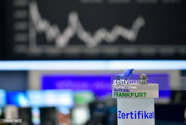 The symbols for the Stock Exchange bear and bull stand in front of the DAX index curve at the Frankfurt Stock Exchange the day after a large majority...