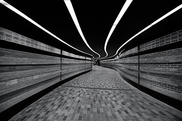 The Symphony of Lines