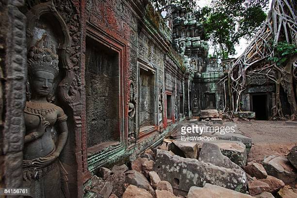 The Ta Prohm temple in the Angkor Archeological Park in Siem Reap on December 28 Cambodia. The temple is typical for its huge roots of trees, jungle...