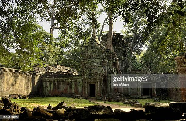 The Ta Prohm temple in the Angkor Archeological Park on December 4 2008 in Siem Reap Cambodia