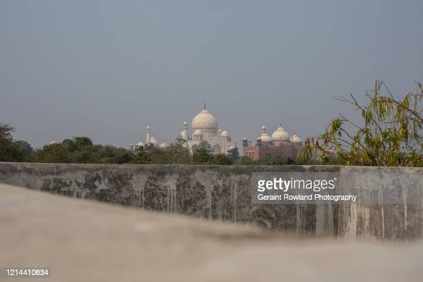 the taj mahal in the distance - celebrity death stock pictures, royalty-free photos & images