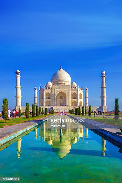 the taj mahal in the morning - taj mahal stock photos and pictures