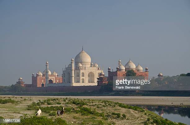 The Taj Mahal the most beautiful building of the world seen through one of the huge gates of the surrounding buildings