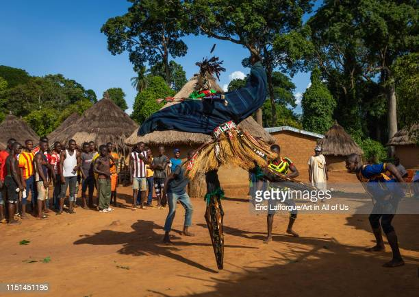 The tall mask dance with stilts called Kwuya Gblen-Gbe in the Dan tribe during a ceremony, Bafing, Gboni, Ivory Coast on May 5, 2019 in Gboni, Ivory...