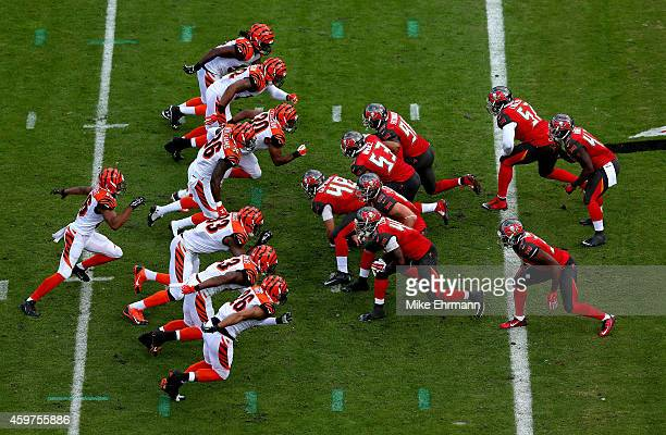 The Tampa Bay Buccaneers line up against the Cincinnati Bengals during a game at Raymond James Stadium on November 30 2014 in Tampa Florida