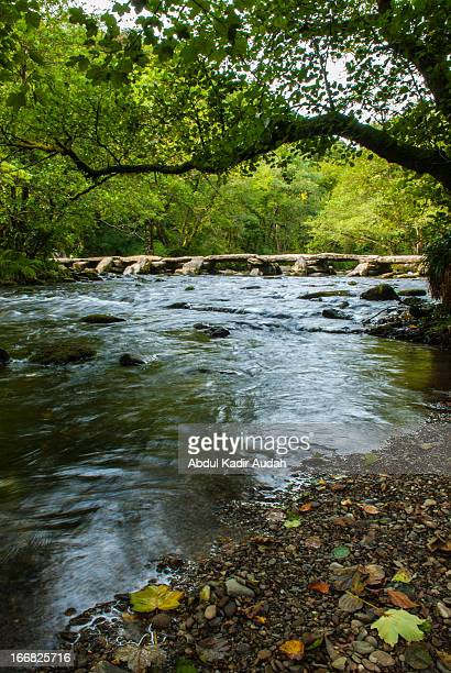 the tarr stepsin exmoor national park - exmoor national park 個照片及圖片檔