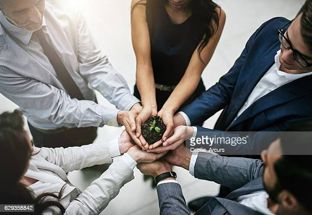the team that works together grows together - responsible business stock photos and pictures