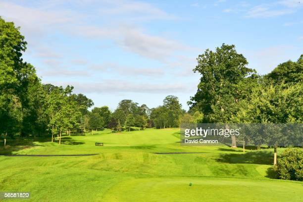 The tee shot on the 413 yard par 4, 11th hole on the Palmer Course at the K Club, the venue for the 2006 Ryder Cup, on August 18, 2005 in Straffan,...