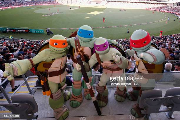 The Teenage Mutant Nija Turtles are seen during the Big Bash League match between the Melbourne Renegades and the Sydney Sixers on January 3 2018 in...