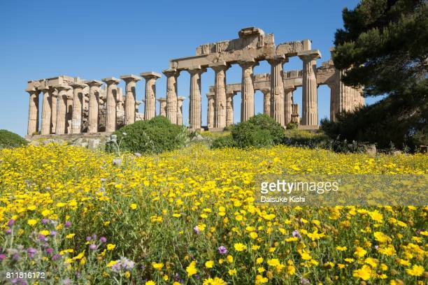 the temple of hera (temple e) at selinunte, sicily, italy - ancient greece photos stock pictures, royalty-free photos & images