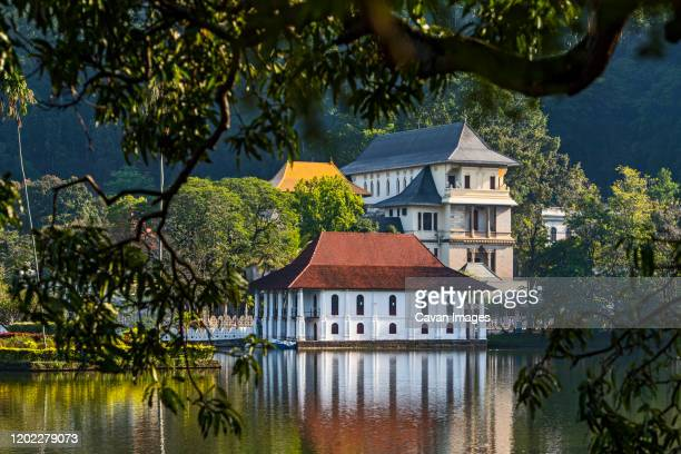 the temple of the holy tooth relict in kandy see from the lake - kandy kandy district sri lanka stock pictures, royalty-free photos & images