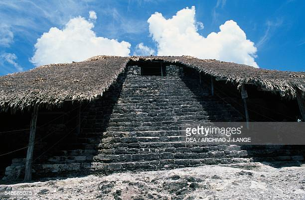 The Temple of the Masks with protective vegetative cover, ca 500, Kohunlich, Quintana Roo, Mexico. Mayan civilisation, 5th-6th century.