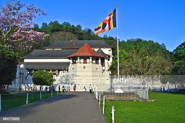 the temple of the sacred tooth relic - dalada maligawa stock photos and pictures