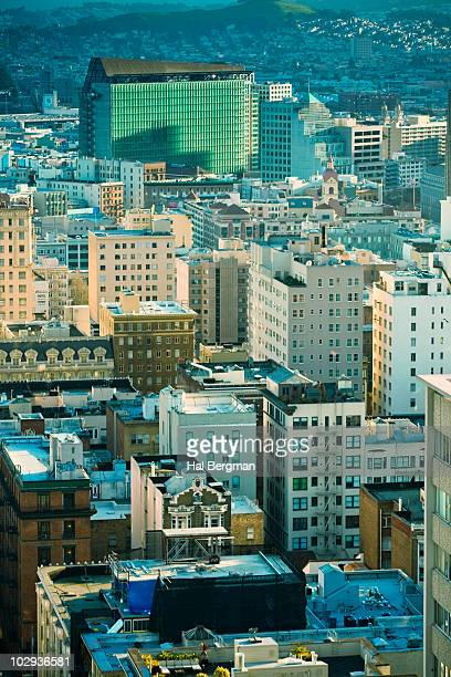 The Tenderloin District