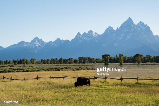 The Teton Range a mountain range of the Rocky Mountains is seen from Jackson Hole Wyoming United States on July 12 2018 It is south of Yellowstone...