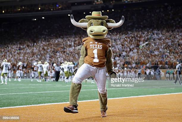 The Texas Longhorns mascot performs on the field during the game between the Texas Longhorns and the Notre Dame Fighting Irish at Darrell K...