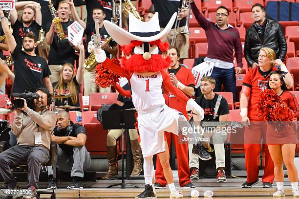 "The Texas Tech Red Raiders mascot ""Raider Red"" during the the game against the High Point Panthers on November 13, 2015 at United Supermarkets Arena..."