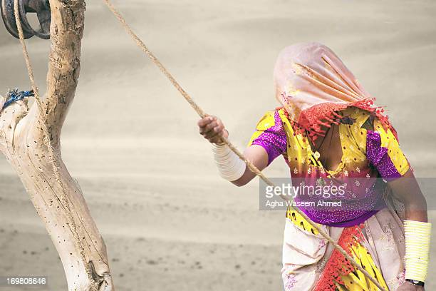 CONTENT] The Thar Desert desert also known as the Great Indian Desert is a large arid region in the northwestern part of the Indian subcontinent With...