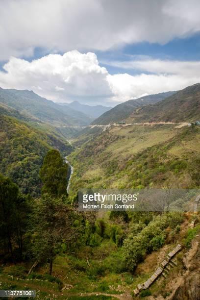 the thick forest around trongsa dzong in trongsa, bhutan - trongsa district stockfoto's en -beelden