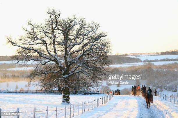 The third lot head down the polytack gallops in heavy snow conditions at the yard of national hunt trainer Nigel TwistonDavies on December 12 2017 in...