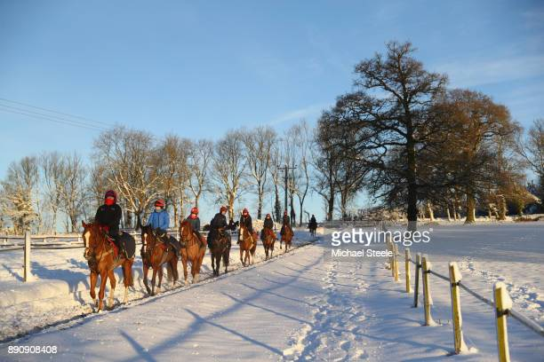 The third lot head down the polytrack gallop morning gallops in heavy snow at the yard of national hunt trainer Nigel TwistonDavies on December 12...