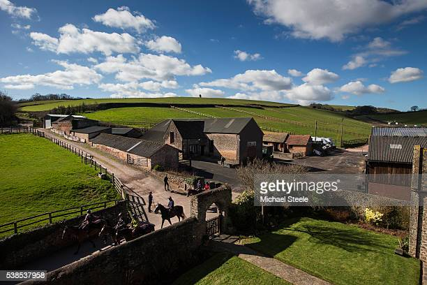 The third lot head out from the yard at Sandhill Racing Stables on March 10 2016 in Minehead England Sandhill Racing Stables set in 500 hundred acres...
