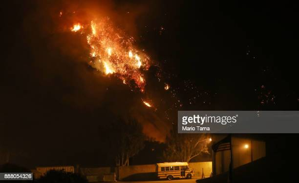 The Thomas Fire burns on December 7 2017 in Ventura California The fire has destroyed 439 structures and burned 115000 acres