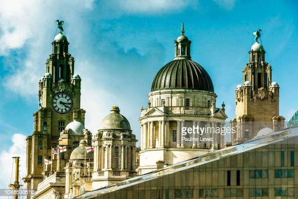 the three graces - merseyside stock pictures, royalty-free photos & images