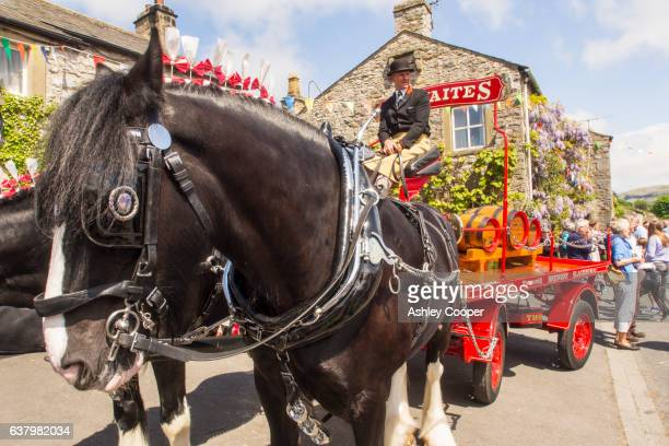 The Thwaites Brewery horse drawn cart at the annual Cuckoo Festival in Austwick, Yorkshire Dales, UK.