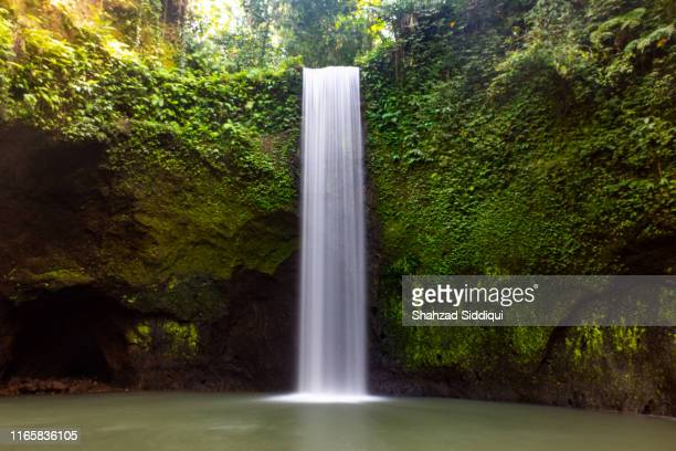 the tibumana waterfall near ubud in bali - wasserfall stock-fotos und bilder