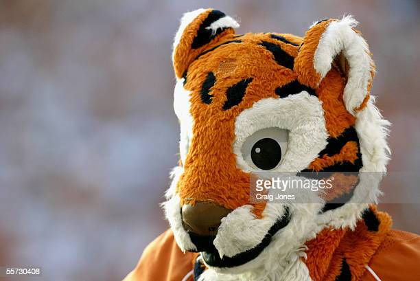 The Tiger the Clemson University Tigers mascot watches the game against the University of Miami Hurricanes at Memorial Stadium on September 17 2005...
