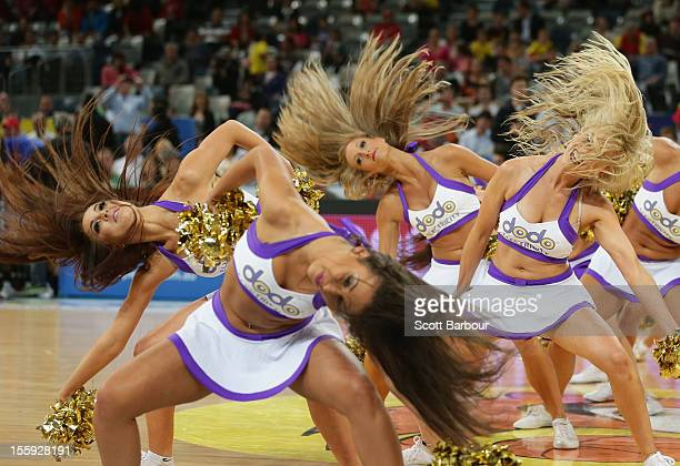 The Tigers cheerleaders perform during the NBL match between the Melbourne Tigers and the Adelaide 36ers at Hisense Arena on November 9, 2012 in...